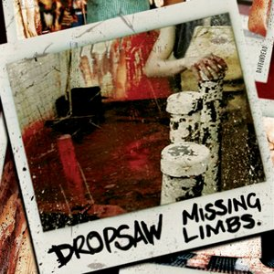 Image for 'Missing Limbs'