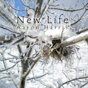 Image for 'New Life'