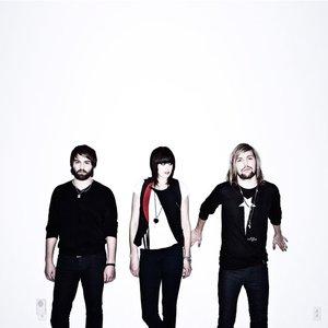 Bild för 'Band of Skulls'