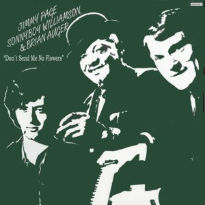 Image for 'Jimmy Page, Sonny Boy Williamson & Brian Auger'