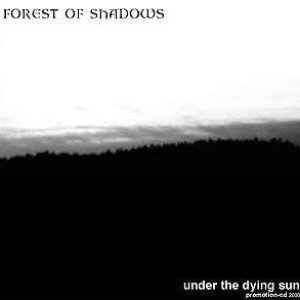 Image for 'Under the Dying Sun'