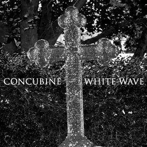 Image for 'White Wave'