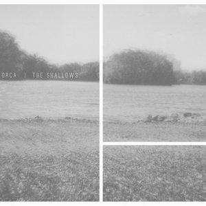 Immagine per 'The Shallows'