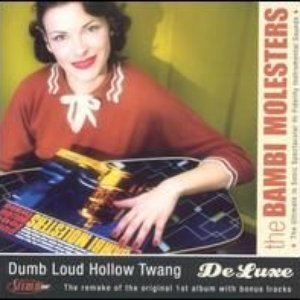Image for 'Dumb Loud Hollow Twang Deluxe'