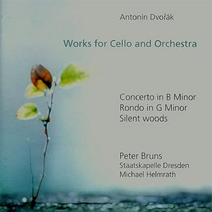Image for 'Concerto for cello and orchestra in B minor op 104 - III. Finale'