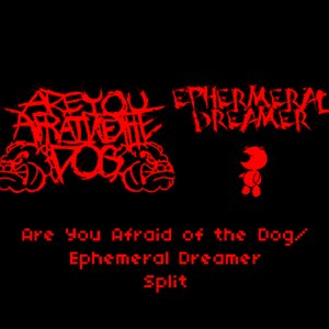 Image for 'Are You Afraid Of The Dog/Ephermeral Dreamer Split'