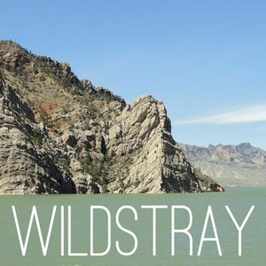 Image for 'Wildstray'