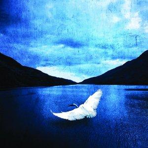 Image for 'Veden äärelle'