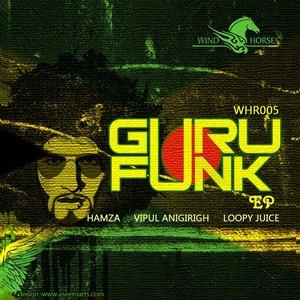 Image for 'Guru Funk'