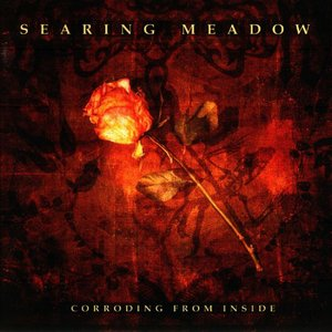 Image pour 'Corroding From Inside'