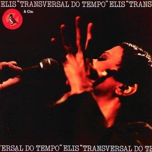 Image for 'Cão Sem Dono (Live)'