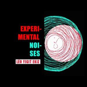 Image pour 'Experimental Noises'