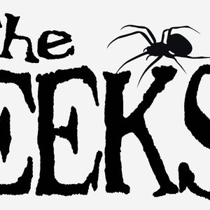 Image for 'The EEKS - EP / 2010'