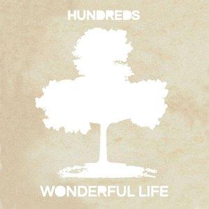 Imagem de 'Wonderful Life'