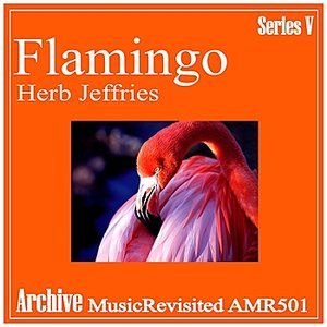 Image for 'Flamingo'
