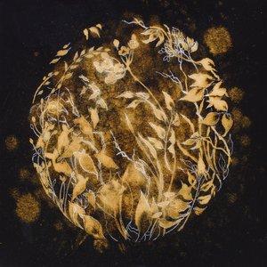 Image for 'Golden World'