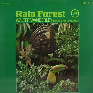 Image for 'Rain Forest'