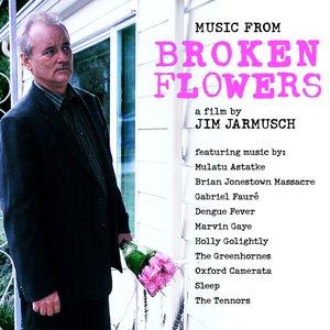 Bild för 'Broken Flowers'