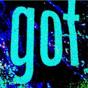 Bild för 'Got'