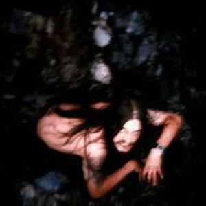 Immagine per 'Traumatic Voyage'