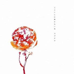 Image pour 'ここにしか咲かない花'