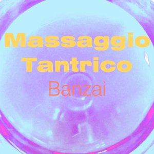 Image for 'Massaggio tantrico (Vol. 3)'