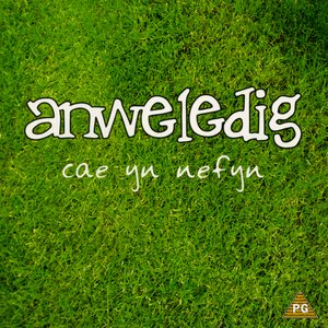 Image for 'Cae Yn Nefyn'