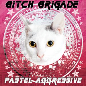 Image for 'Pastel Aggressive'