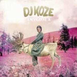 Image for 'DJ Koze feat. Caribou'