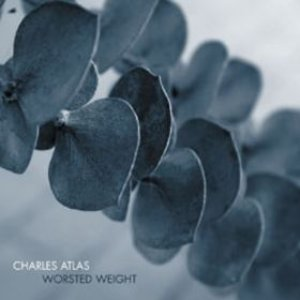 Image for 'Worsted Weight'