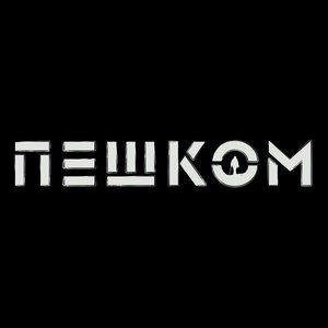 Immagine per 'Пешком (акустика)'