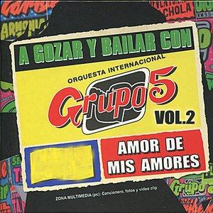 Image for 'A Gozar y Bailar Con Grupo 5, Vol. 2'