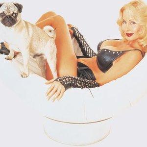 Bild för 'Dolly Buster'
