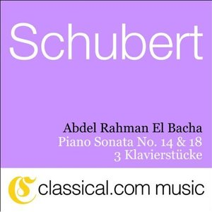 Image for 'Franz Schubert, Piano Sonata No. 18 In G, Op. 78 D. 894'
