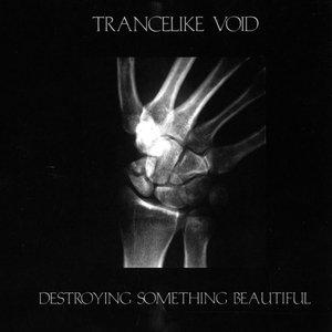 Imagem de 'Destroying Something Beautiful'