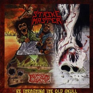 Image for 'Re Thrashing the Old Skull'