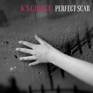 Image pour 'Perfect Scar'