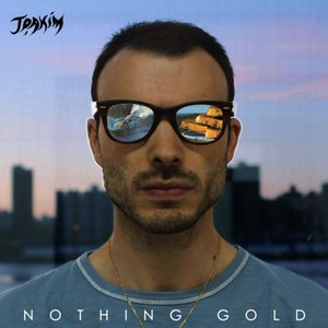 Image for 'Nothing Gold'