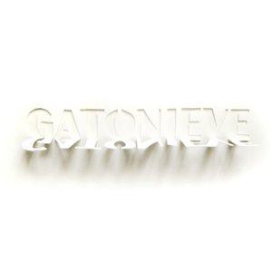 Image for 'Gatonieve'