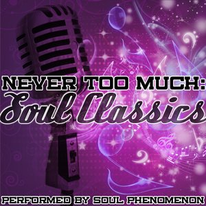 Image for 'Never Too Much: Soul Classics'