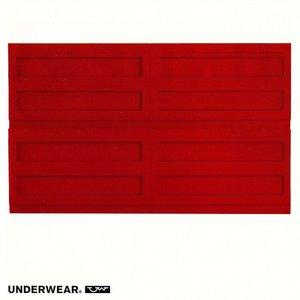 Image for 'UNDERWEAR'