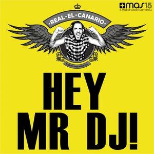 Bild für 'Hey Mr DJ'