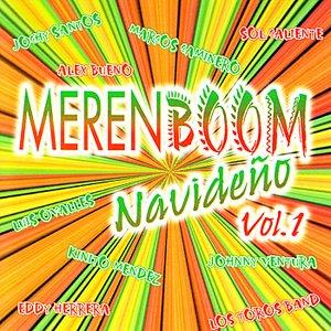Image for 'Merenboom Navideno Vol. 1'
