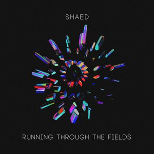 Image for 'Running Through The Fields'