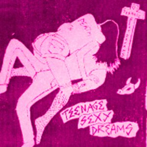 Image for 'TEENAGE SEXY DREAMS'
