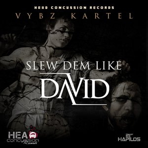 Image for 'Slew Dem Like David'