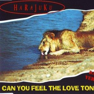 Bild für 'Can You Feel The Love Tonight (Dance Version)'