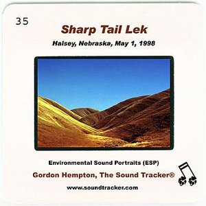 Image for 'Sharp Tail Lek (Halsey, Nebraska, May 1, 1998)'
