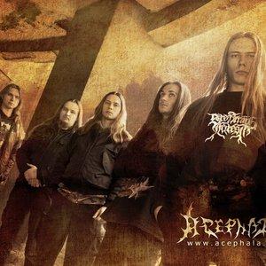 Image for 'Acephala'