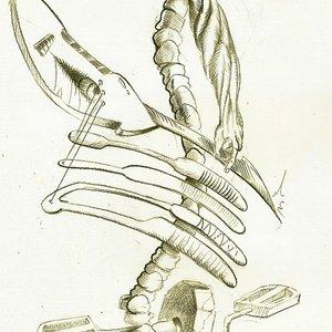Image pour 'Проект: Распатор'